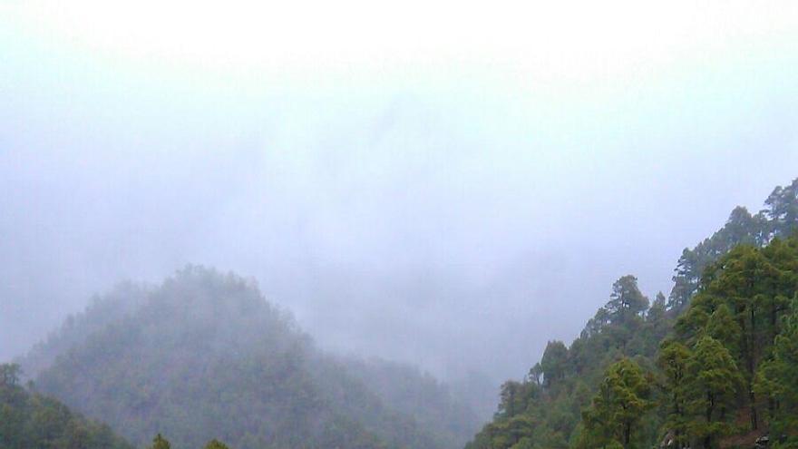 En la imagen, el cauce del barranco de Taburiente (en la cabecera del barranco de Las Angustias), en la mañana de este jueves, 31 de marzo, con abundante caudal. Foto: Arturo Pérez.
