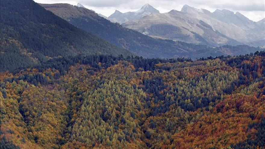 Un estudio sobre el Neolítico dice que los vascos tienen su origen en Los Pirineos y Aquitania