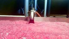 Cooperativas Agroalimentarias defiende que el 95% de la ayuda a la destilación de crisis la perciba la bodega