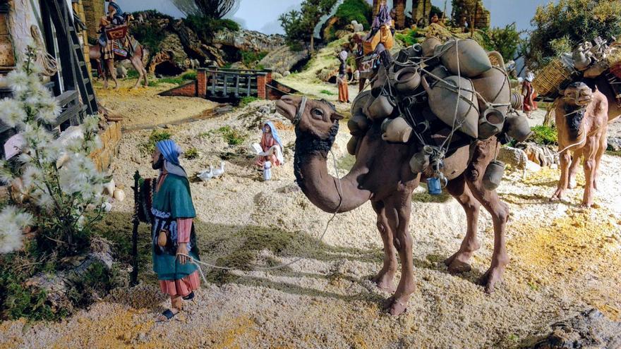 Belén Galileo - camellos