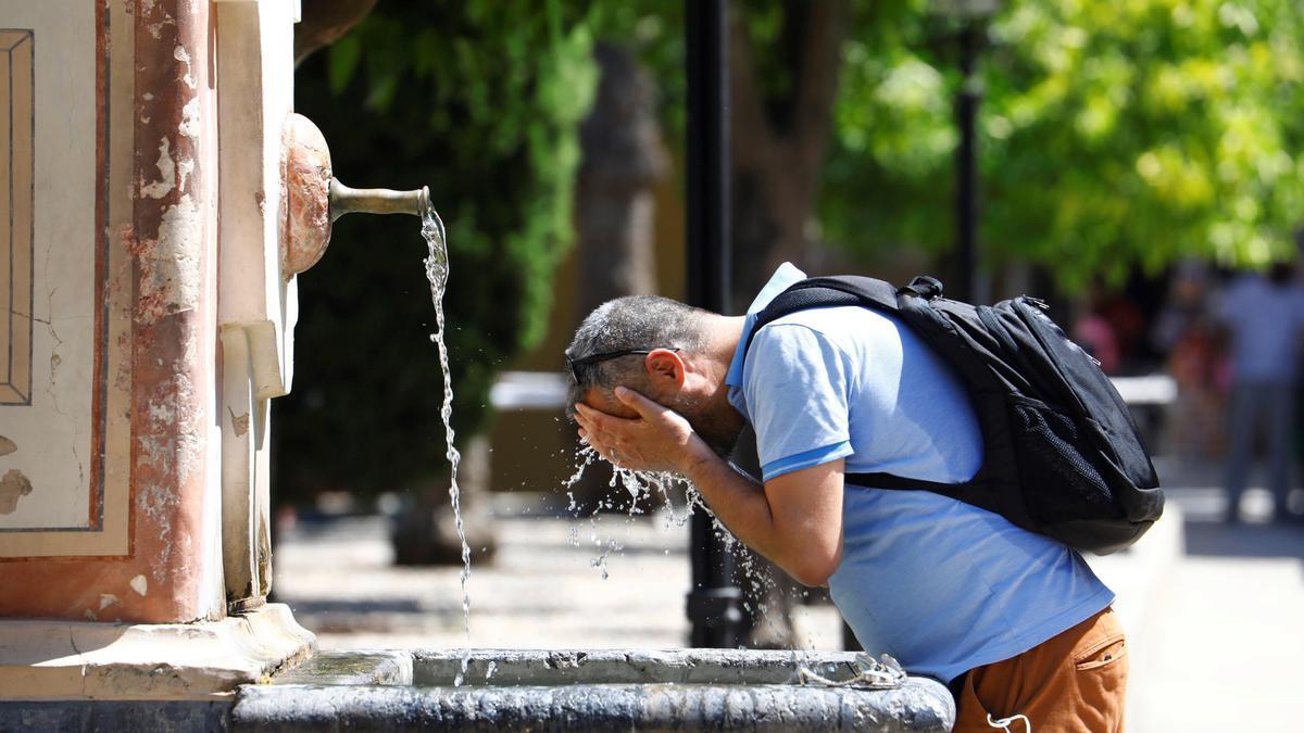 Patio de los Naranjos de la Catedral de Córdoba. EFE/Salas