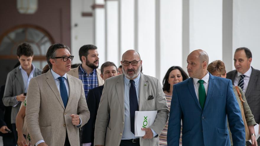 """Vox pide a Junta medidas para no reconocer """"falsos planteamientos de tinte ideológico"""" como la brecha salarial de género"""