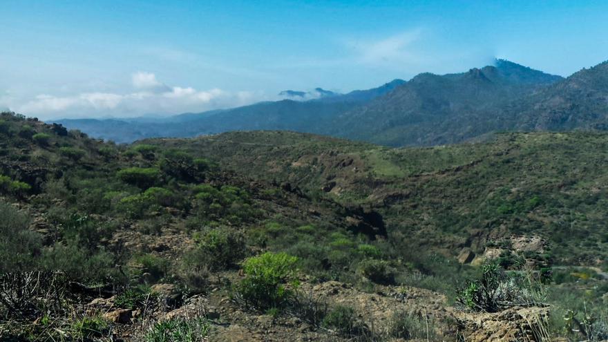 La transición ecológica de Gran Canaria y el modelo Chira-Soria, a debate en unas jornadas del Cabildo
