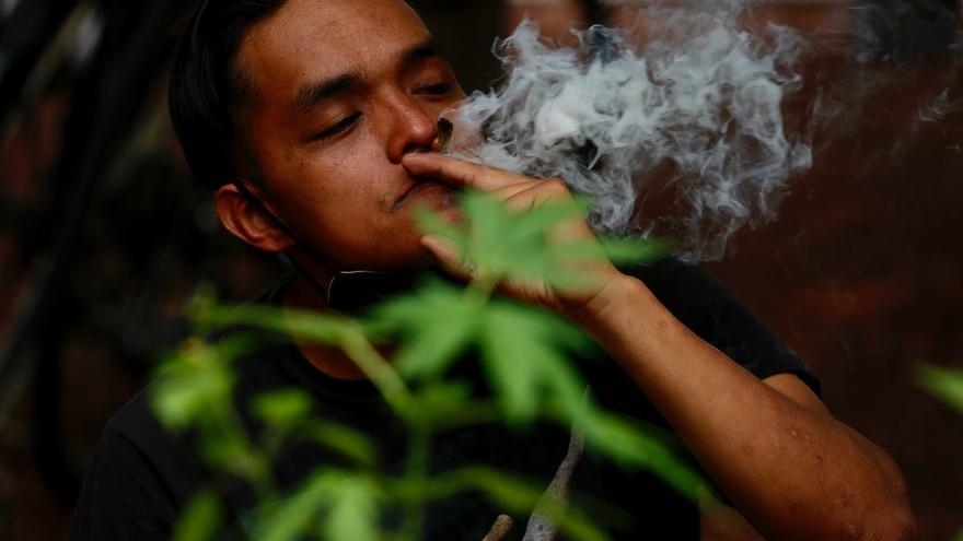 Consumidores lúdicos de marihuana aguardan la decisión del Supremo de México