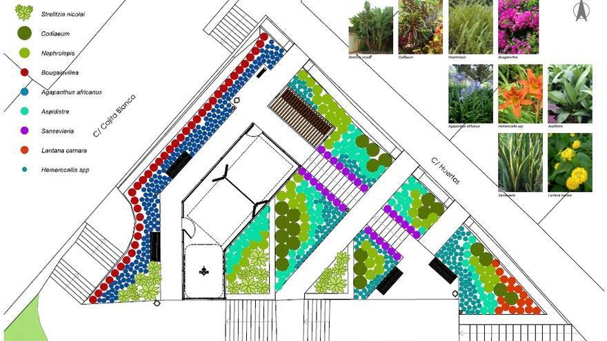 En la imagen, distribución de las distintas variedades de flora autóctona en el jardín.