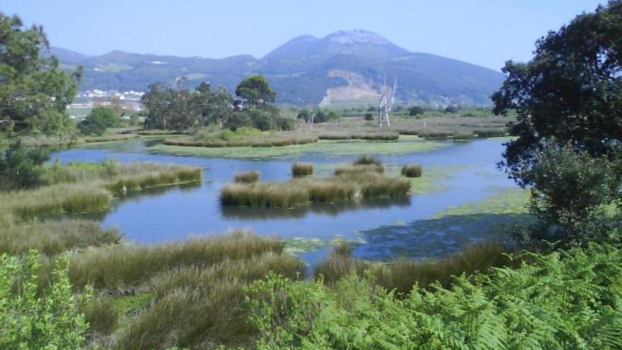 Gobierno aprueba el PORN de las Marismas de Santoña, Victoria y Joyel, que amplía el parque en 110 hectáreas