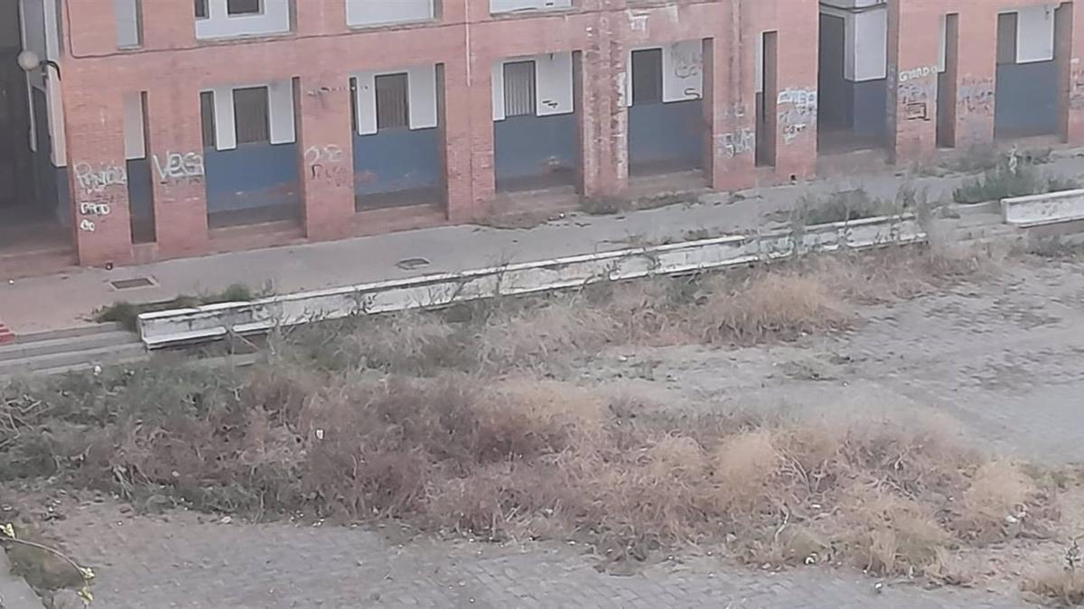 Pastizales existentes en el Patio Gabriel Celaya de Las Moreras.