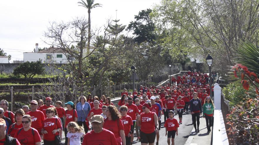 Una 300 personas han participado en  la 'I Caminata Dona Sangre' de La Palma que se ha realizado este sábado entre el mirador de La Concepción, en Breña Alta, y a plaza de España de Santa Cruz de La Palma.