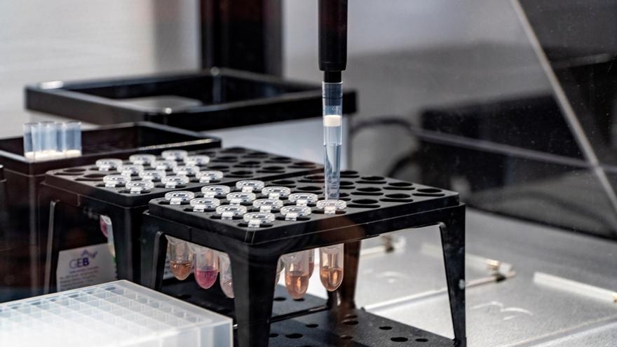 Detalle de una estación robotizada para la realización de pruebas PCR.