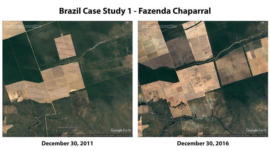 Imagen de satélite de una región de Brasil deforestada. Mighty Earth.