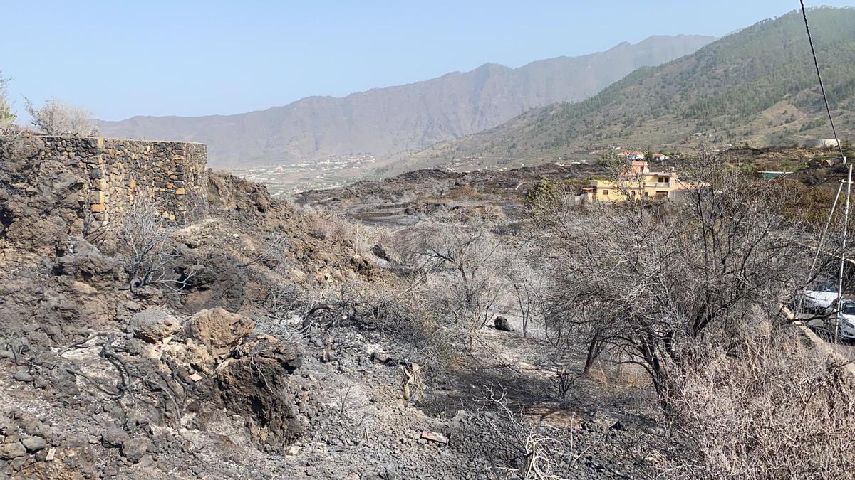 Zona afectada por el incendio de El Paso.