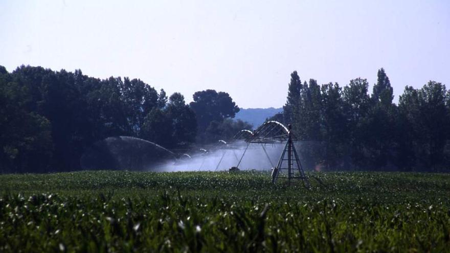 Hasta un 20 % de los aragoneses están expuestos a aguas contaminadas por nitratos o sulfatos