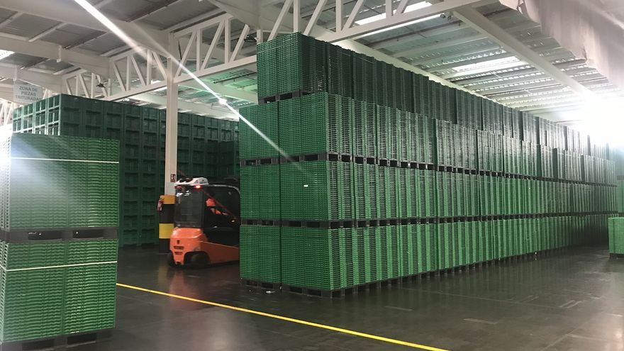 Las cajas, listas para viajar de nuevo tras pasar el proceso de reciclaje en Logifruit