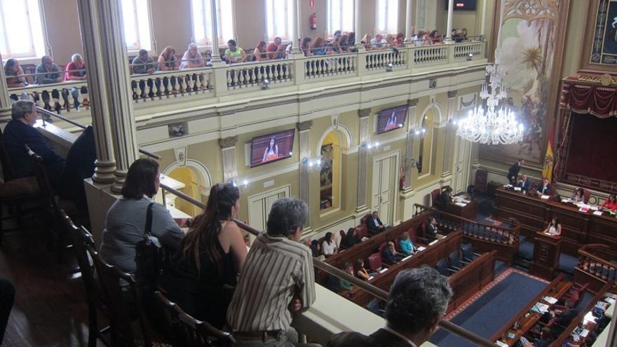 Miembros del colectivo Sin Identidad en el Parlamento de Canarias