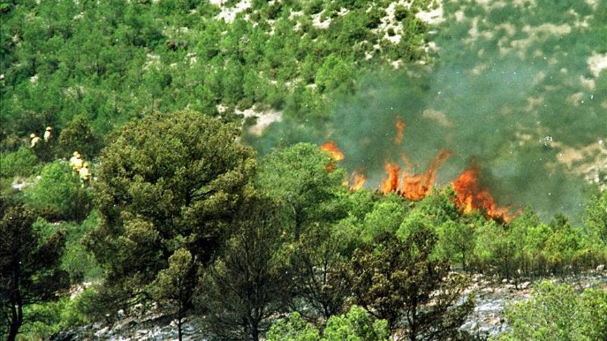 Se declara un incendio forestal de importantes dimensiones en Almansa