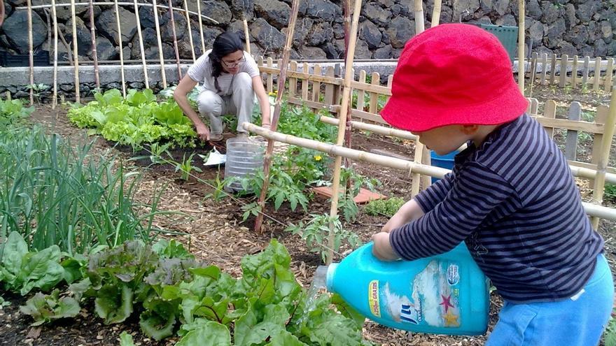 GHK y Kutxa Ekogunea renuevan su colaboración para proveer compost de materia orgánica a 726 huertas