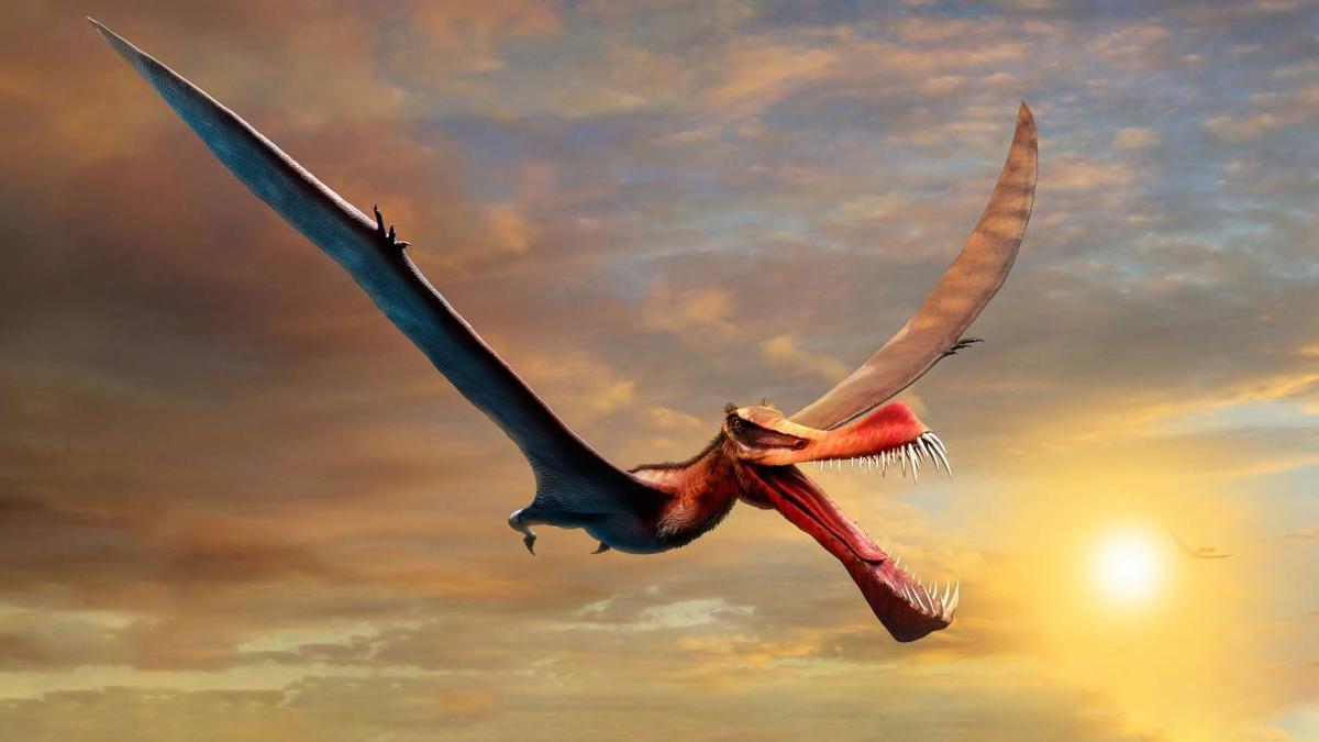 Descubren los restos de un 'dragón' del Cretácico en Australia