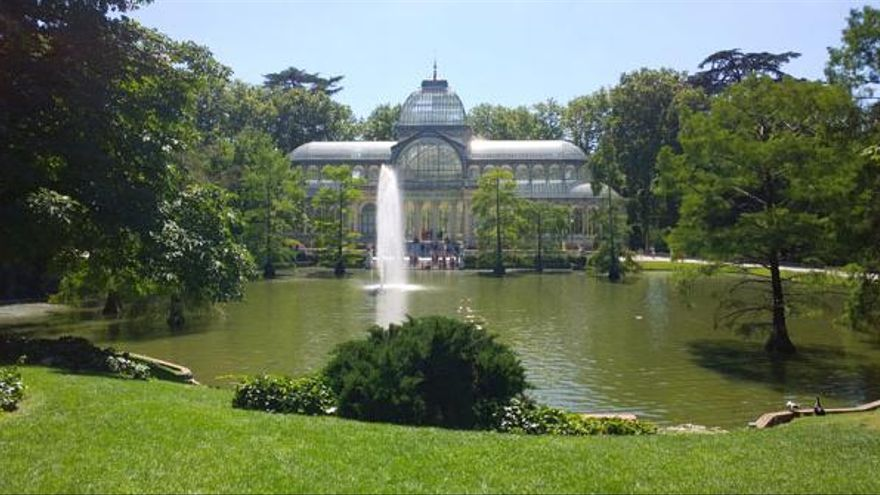En el parque del Retiro están la gran mayoría de especies de árboles de Madrid. / Ayto. de Madrid