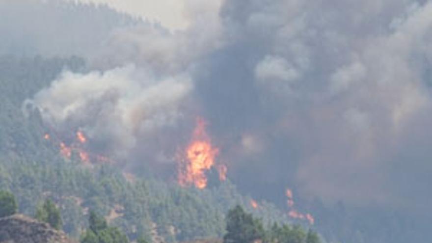 Incendio en La Palma, este verano. (CANARIAS AHORA)