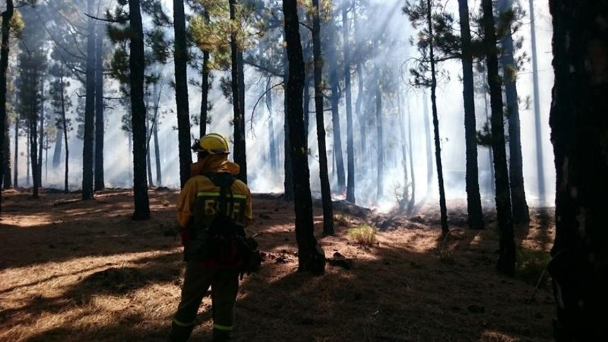 El Gobierno de Canarias ha dado por finalizada la situación de alerta por riesgo de incendio.