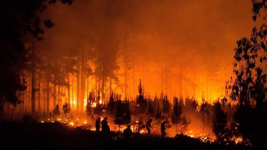 Incendios forestales siguen activos en 28 focos del centro y sur de Chile