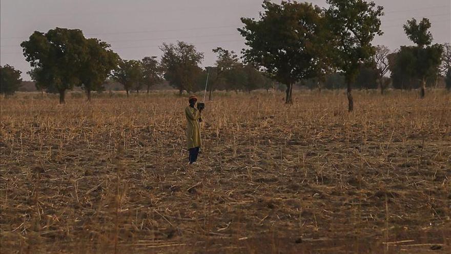 El jefe del Ejército de Mali dice que Gao y Tombuctú serían liberadas en un mes