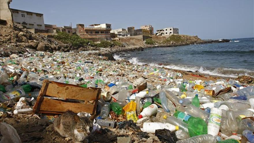 El plástico contamina cada rincón del planeta