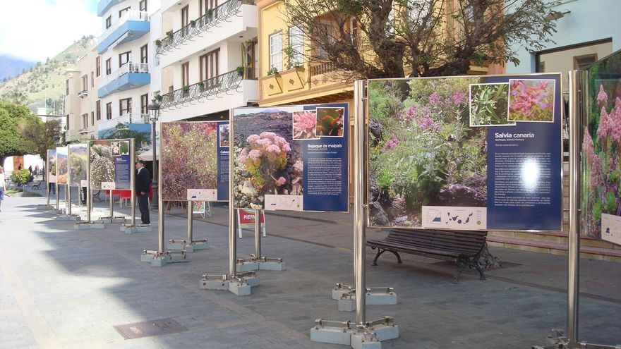 En la Calle Díaz Pimienta de Los Llanos de Aridane se muestra la exposición en el formato exterior.