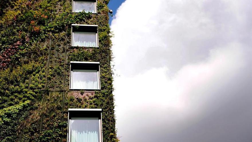 """Un naturalista dice que las """"ciudades se han vuelto más verdes y el campo más estéril"""""""