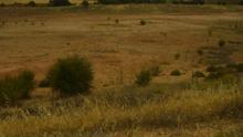 Situación actual de los terrenos de la cantera.