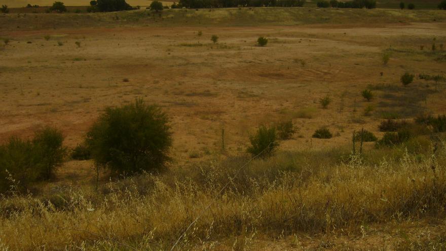 """Cantera """"Los Arbolillos"""". Torrejoncillo del Rey (Cuenca). Situación actual tras la cantera, 9/2014."""
