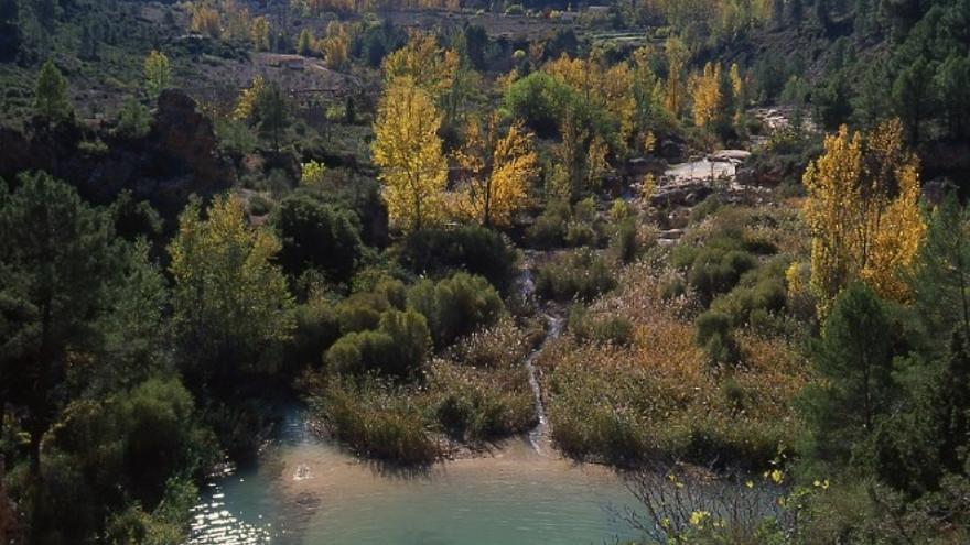 Foto: Asociación Reserva de la Biosfera Valle del Cabriel