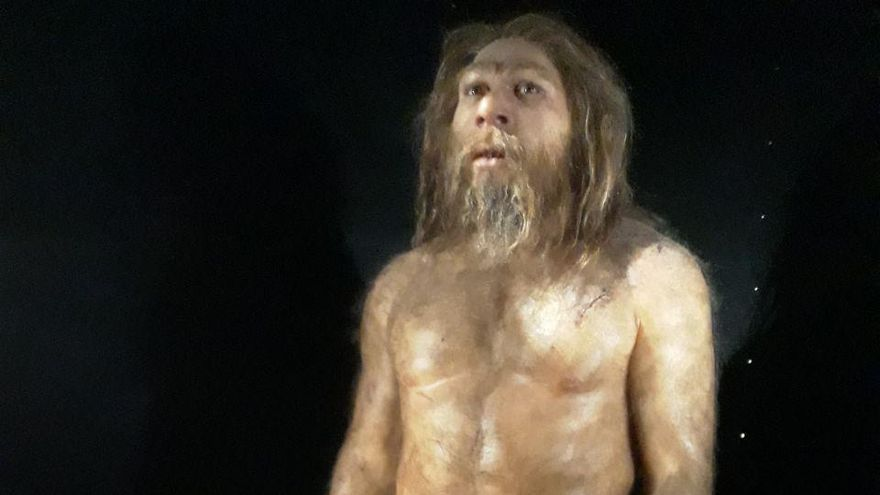 Uno de los homínidos representados en el Museo de la Evolución Humana de Burgos