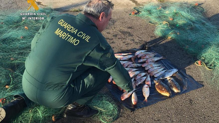 Sorprenden a un pescador furtivo con cachones y salmonetes en un barco en la bahía de Santander