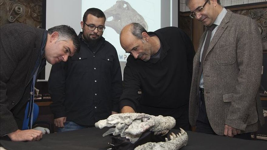 El cocodrilo de grandes dientes de Cuenca, nueva especie de 75 millones años