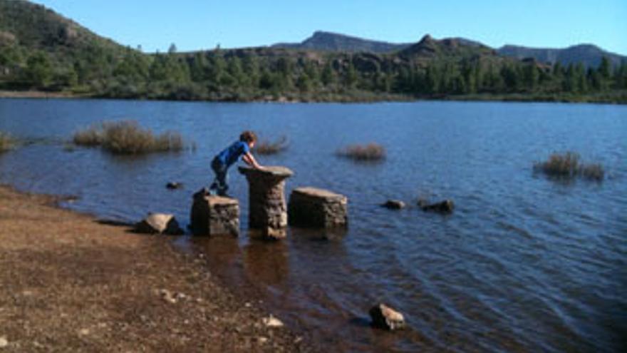 Las lluvias de diciembre han llenado presas de Gran Canaria, como la de Las Niñas, con agua hasta en la zona recreativa llegando a anegar bancos y mesas de piedra.