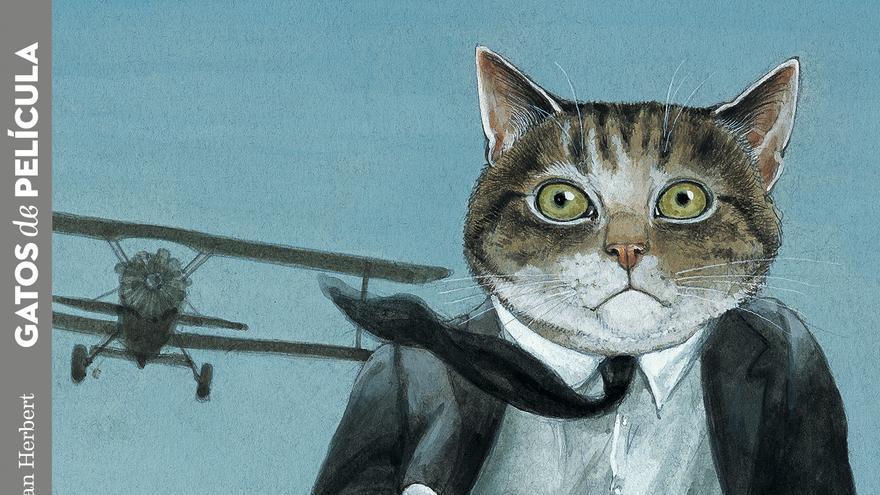 Cubierta del libro 'Gatos de película', de la editorial Lata de Sal