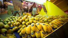 El consejero de Agricultura acude a París a pedir que se refuerce el seguimiento de los precios del plátano