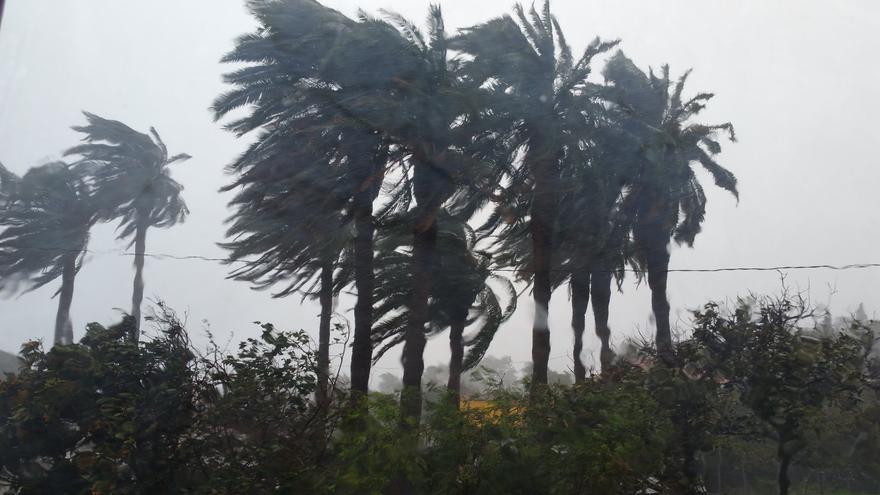 Imagen del temporal de viento registrado esta semana en La Palma.
