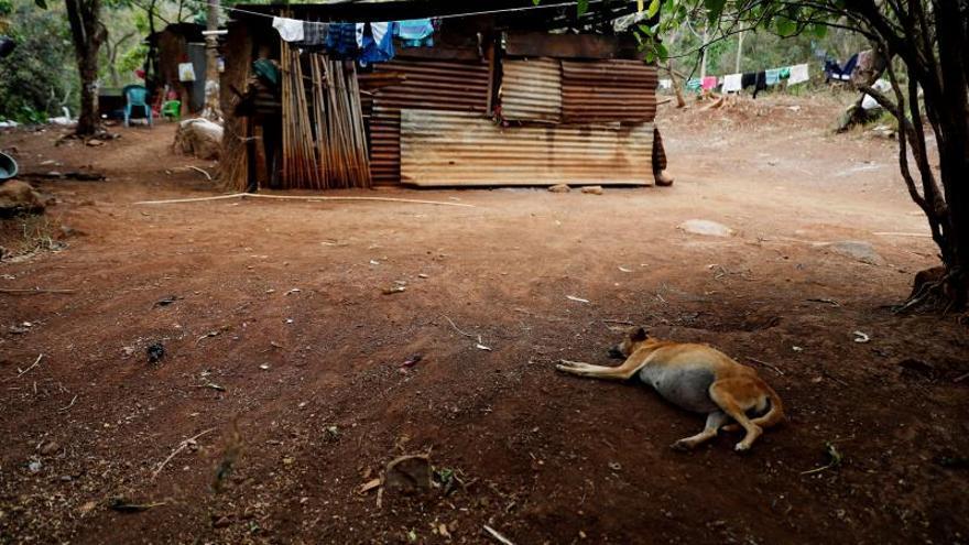 Gobierno de Guatemala atenderá a 354.000 familias con hambruna por la sequía