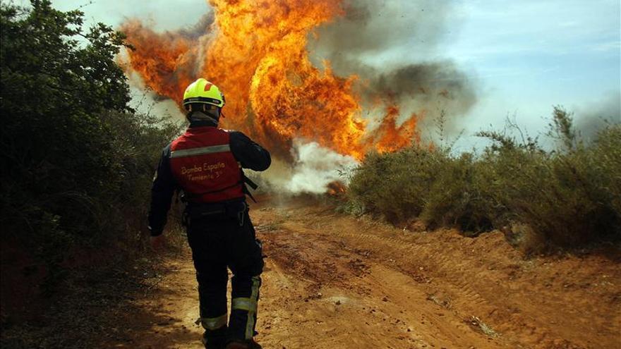 """Las autoridades decretan la """"alerta roja"""" en el sur de Chile por incendio forestal"""