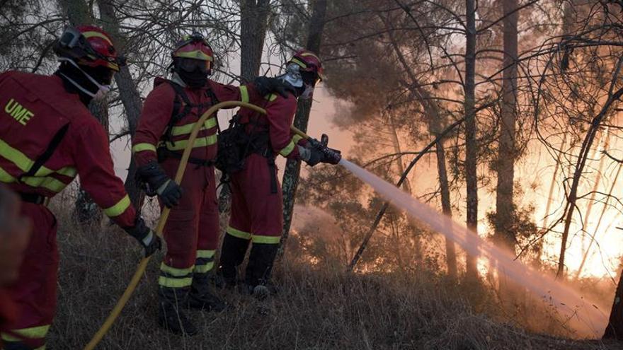Los fuegos arrasaron en Portugal 141.000 hectáreas en lo que va de año