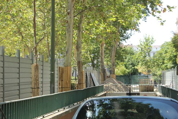 Los vecinos temen que los árboles mueran por las obras | Fotografía: Somos Chueca