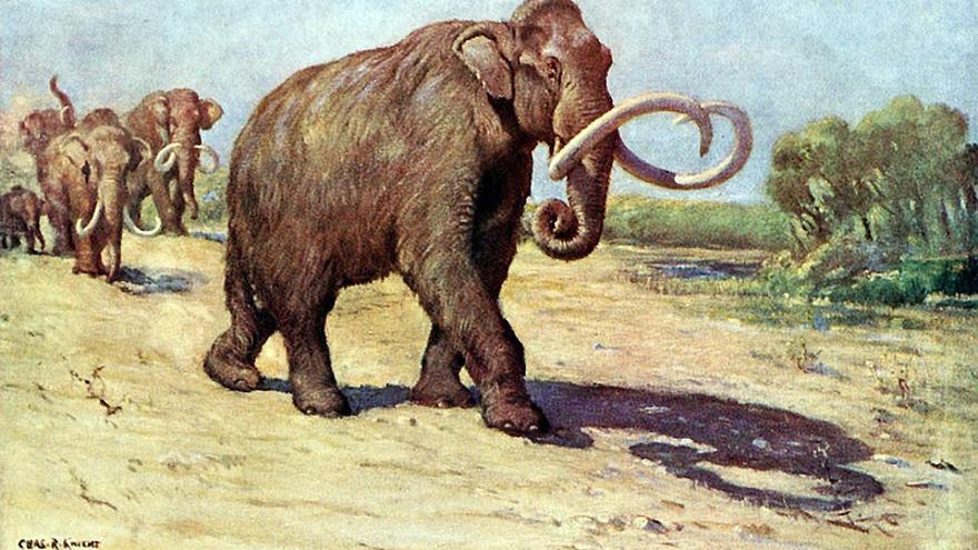 Representación artística del mamut de Colombia