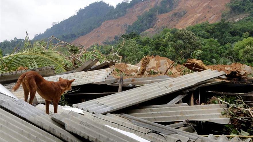 Ascienden a 92 los muertos por lluvias con 109 desaparecidos en Sri Lanka