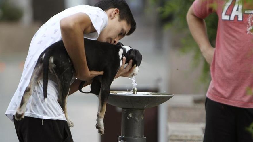 Alerta por calor en 38 provincias con termómetros por encima de 40 grados