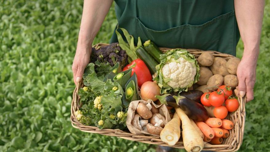 Los agricultores de proximidad garantizan el abastecimiento