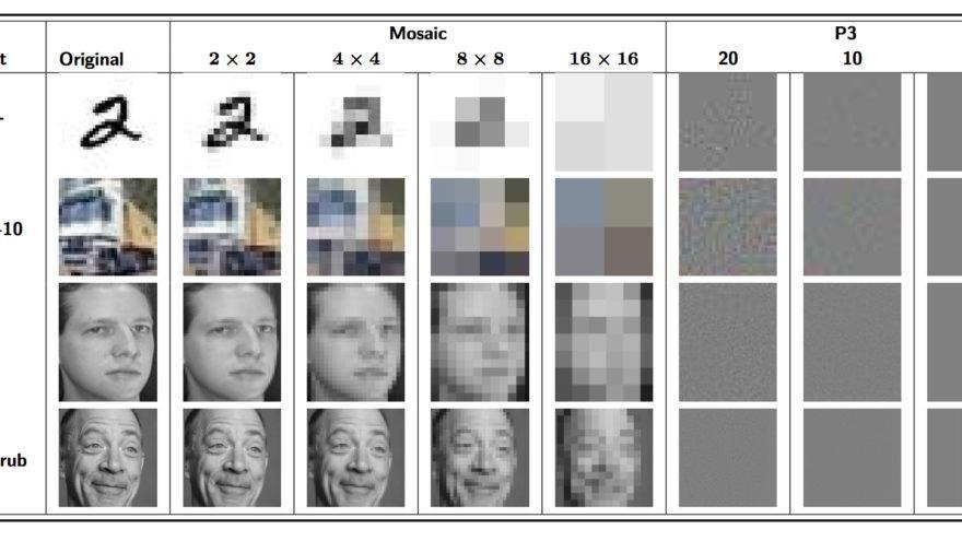 La imagen original es la de la izquierda del todo. Las otras columnas muestran la pixelación, cada vez mayor; mientras que las últimas tres columnas muestran tres niveles de cifrado utilizando P3