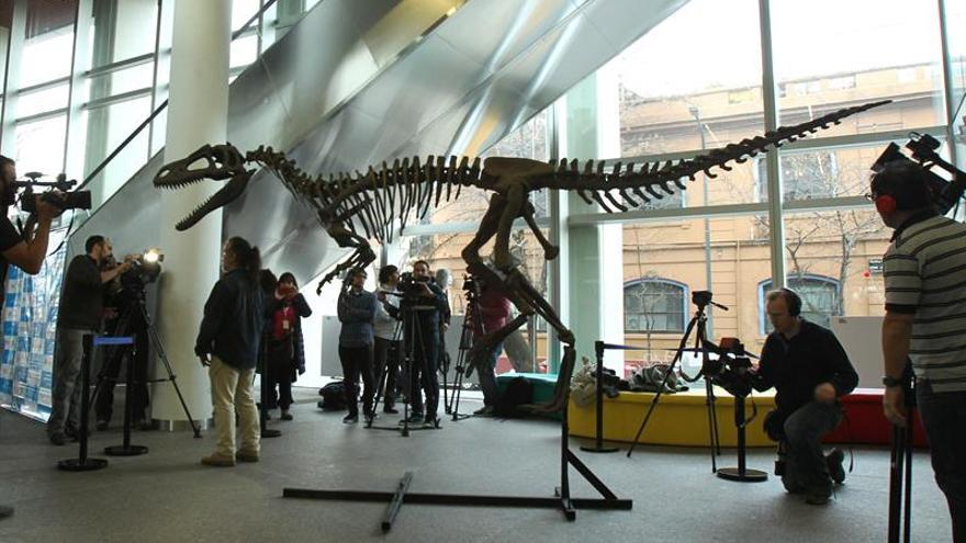 Presentan en Argentina a Gualicho, insólito dinosaurio carnívoro de la Patagonia