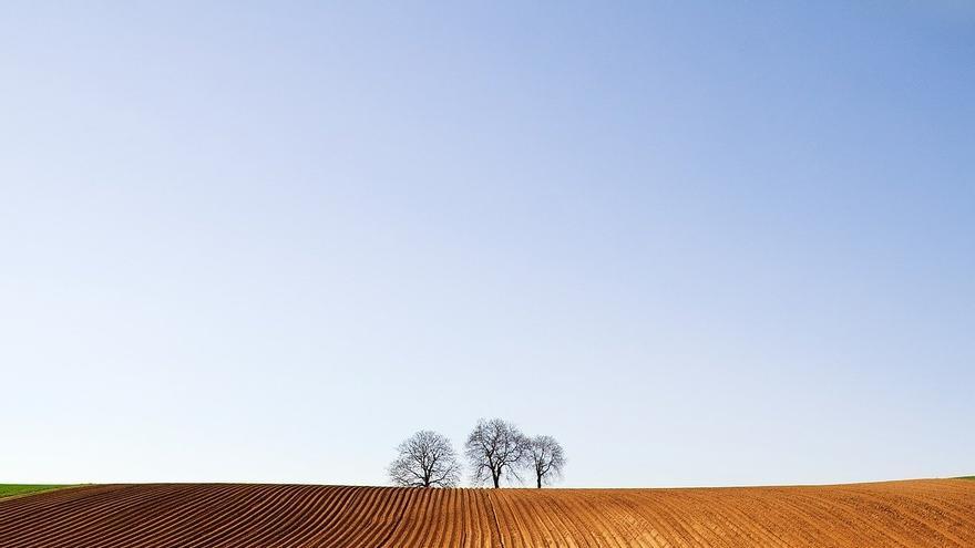 ¿Cuántas veces al día necesitamos la agricultura?